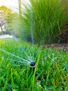 New sprinkler head